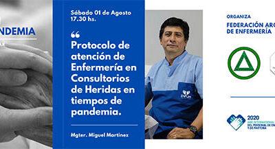 3er. Webinar de la Federación Argentina de Enfermería (FAE).